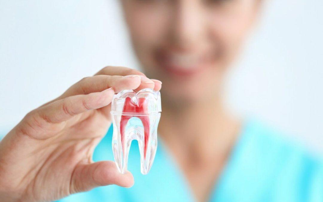 ¿Cuánto duele una endodoncia?